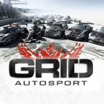 GRID: Autosport (2014) от R.G. Механики