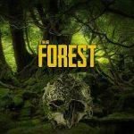 The Forest (2016) последняя версия
